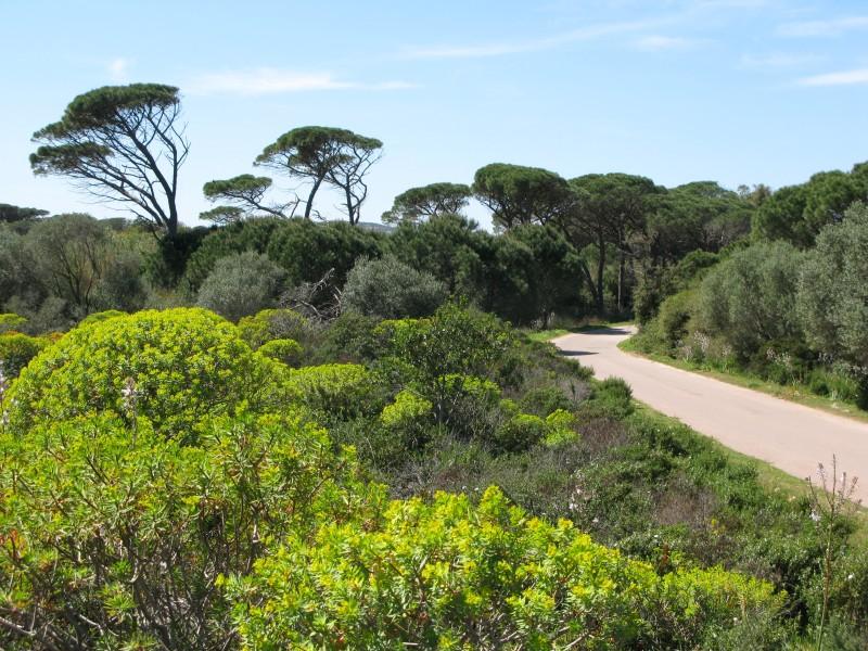 Unterwegs auf Isola Maddalena